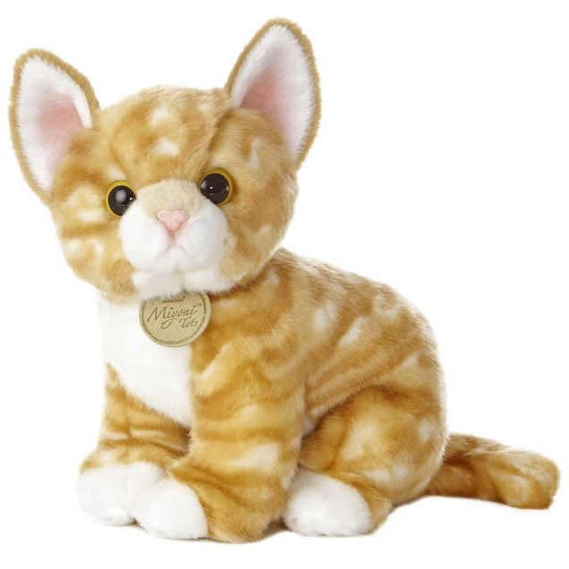 Plush Orange Tabby Kitten
