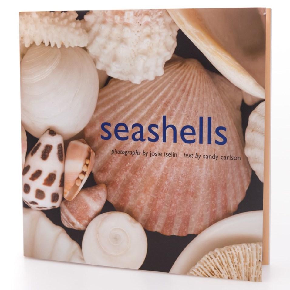 Seashells Book